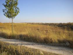 Villamarco desde el Camino de Santiago